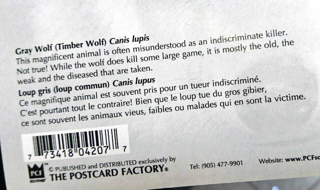lupus postcard description